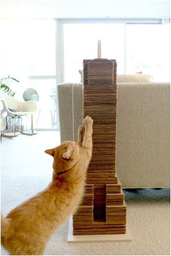 15 arranhadores caseiros para gatos passo a passo