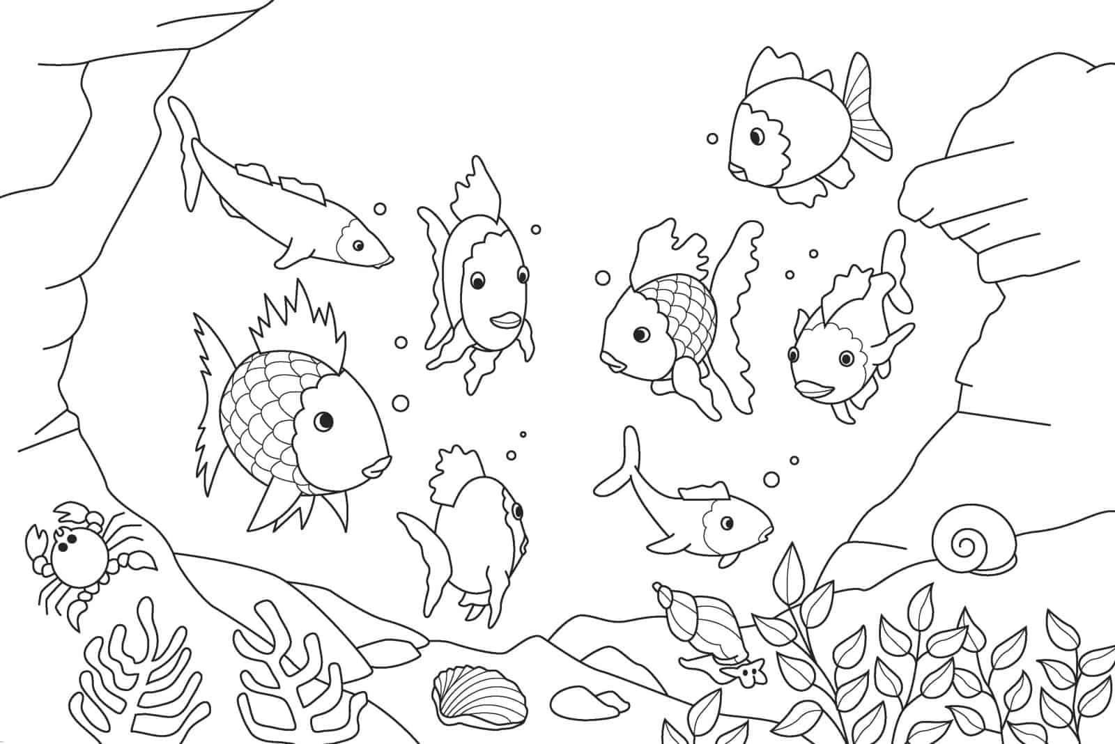 Peixinhos para colorir - 25 desenhos lindos