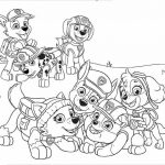 Patrulha Canina para imprimir e colorir em casa