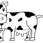 Desenhos de vacas para colorir